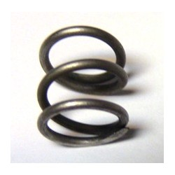 20B175 Indian Prince Exhaust valve relief cam spring